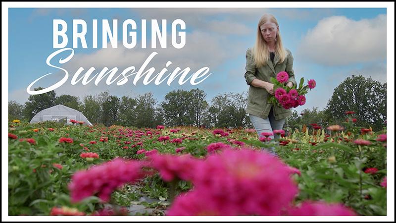 Bringing Sunshine Movie Poster